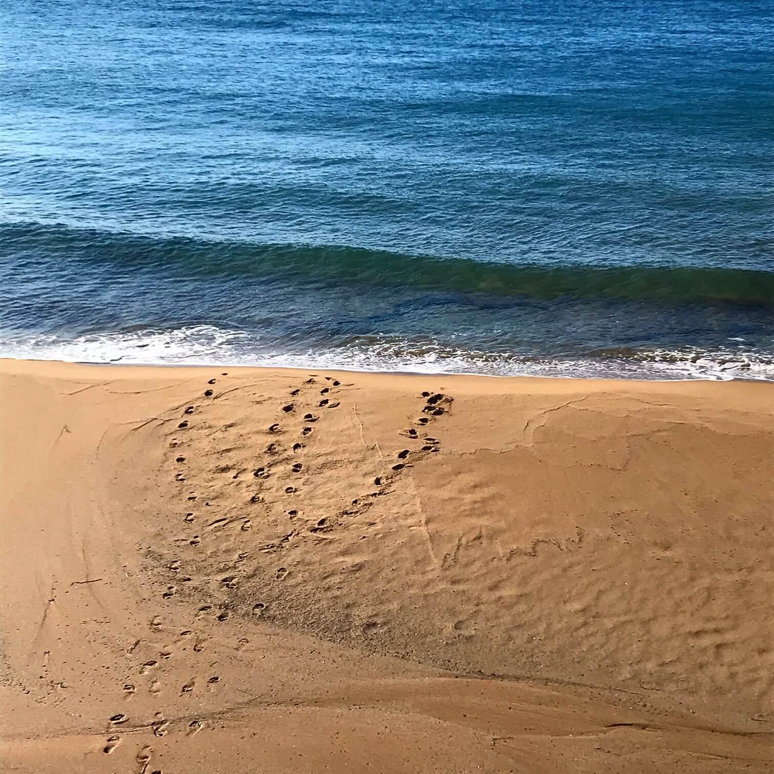 Schwimmen im Winter Spuren im Sand